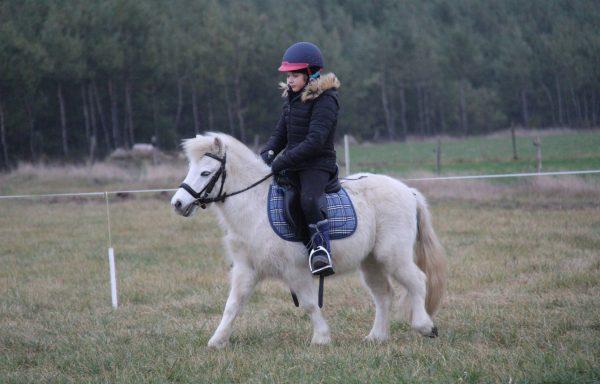Oprowadzanie na koniu lub kucu